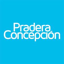 Mall Pradera Concepción